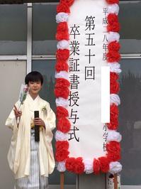 2017-saitama-ssama151.jpg