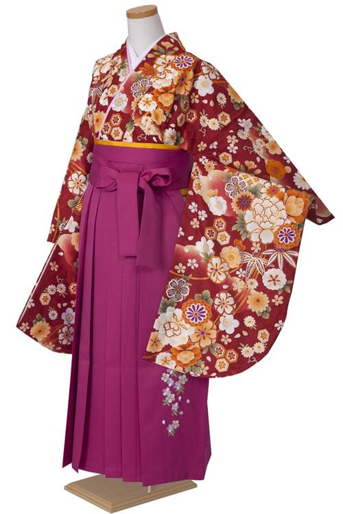 亀甲桜 赤