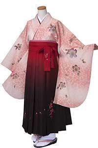 ピンクぼかし桜