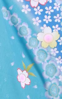 水色×ピンク桜