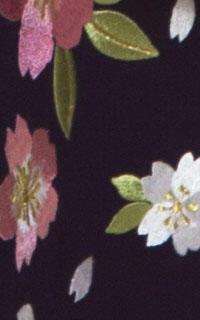 紫大桜Details3