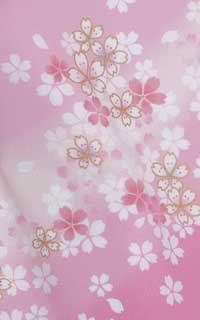 桜色HNDetails1