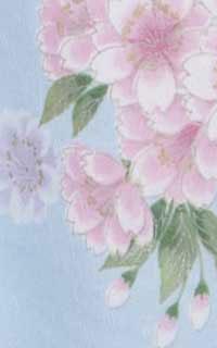 ブルー山桜