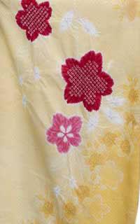 黄かのこ桜Details1