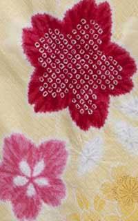 黄かのこ桜Details3