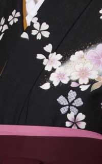 黒舞桜Details2