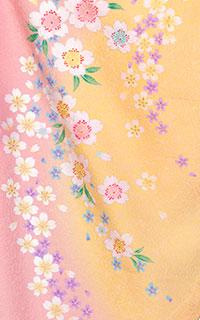 ピンク桜梅流Details1