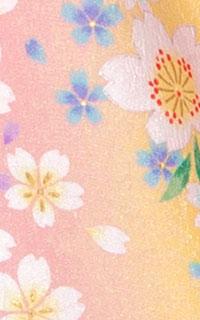 ピンク桜梅流Details3