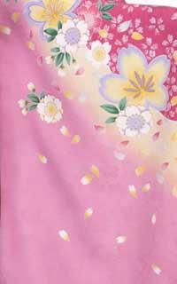 ピンク黄桜Details1