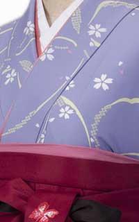 うす紫蝶Details2