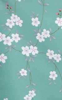 うす緑開花
