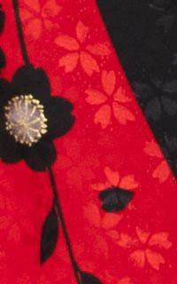 よろしく赤黒Details3