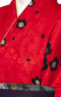 よろしく赤黒Details2