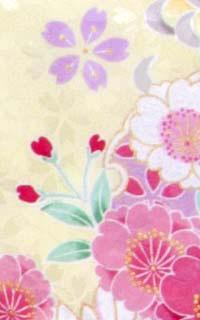 四季黄Details3
