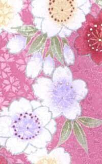 ピンクはるかDetails3