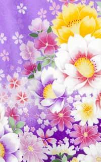 紫花枕Details1