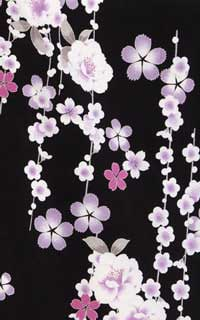 黒紫さくらんDetails1
