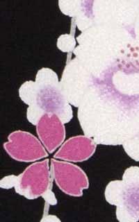 黒紫さくらんDetails3