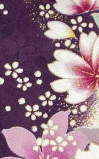 紫香苗Details3