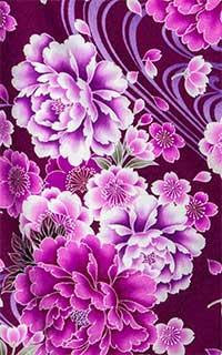 紫しゃくやくDetails1