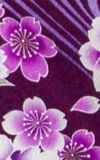 紫しゃくやくDetails3