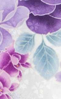 ガーデン紫Details3