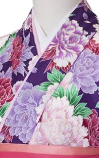 紫百日草Details2