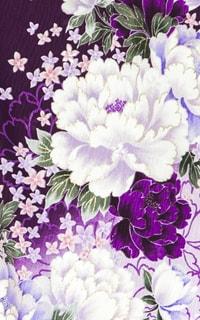 紫ビオラDetails1