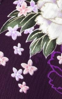 紫ビオラDetails3