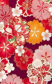 紫桜かのこDetails1