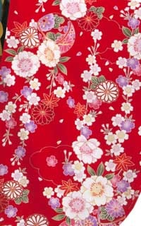 赤まり桜Details1