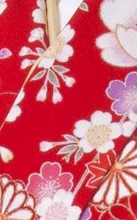 赤まり桜Details2