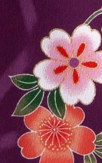京紫Details3