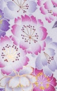 白紫ばらDetails3