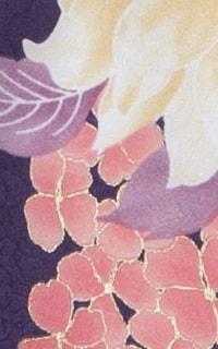 紫ロビンDetails3