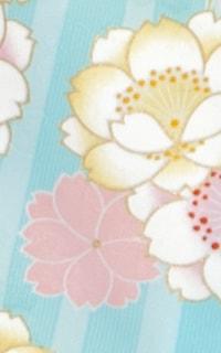 矢桜水色Details3