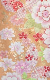 黄桜Details1