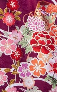 しきぶ紫Details1