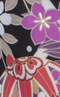花菖蒲 黒Details3