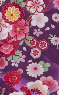 亀甲桜紫Details1