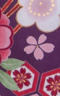 亀甲桜紫Details3