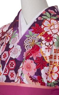 亀甲桜紫Details2