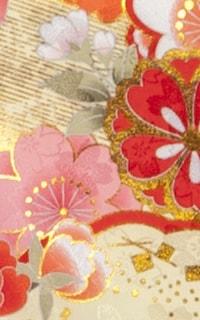沙石赤Details3