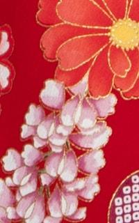 丹波赤Details3