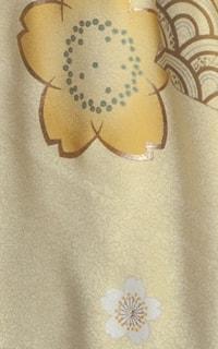 黄和音Details1