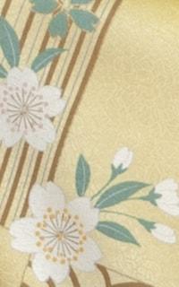 黄和音Details3