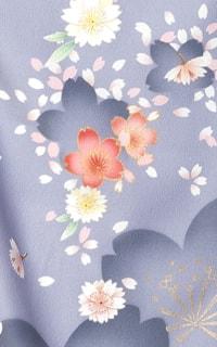 灰色桜野Details1