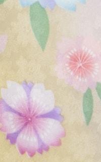 黄すみれ桜Details3