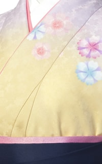 黄すみれ桜Details2