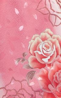 Pオーロラ姫Details1